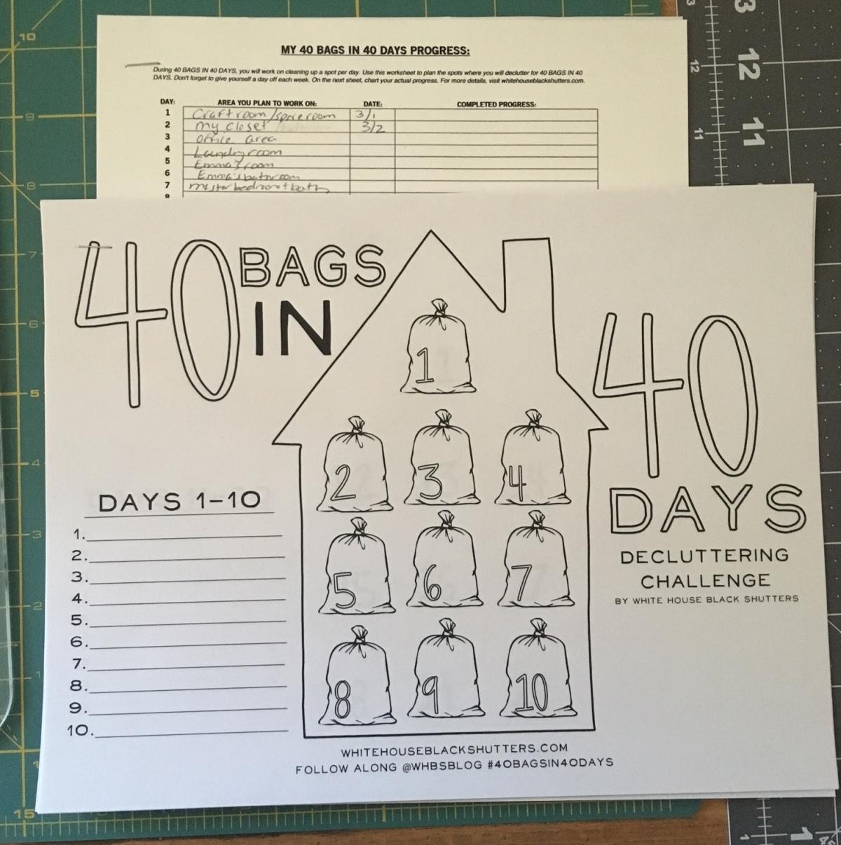 40 Bags Challenge